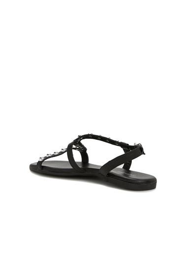 Divarese Divarese 5025317 Trok Detaylı Kadın Sandalet Siyah